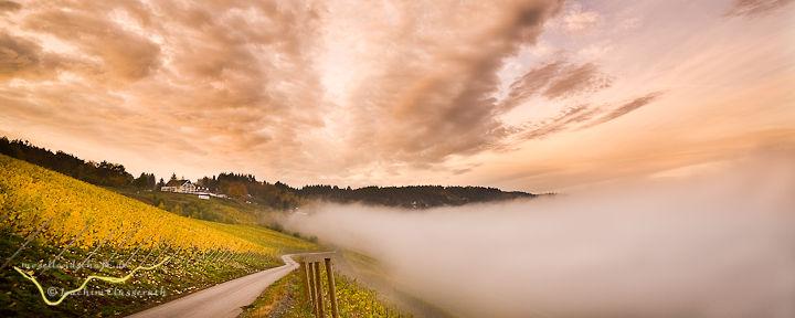 Trittenheimer Apotheke vor der Nebelflut