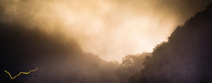 Nebelschwaden über dem Piesporter Berg der Mosel-Loreley
